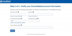 consolidated email login